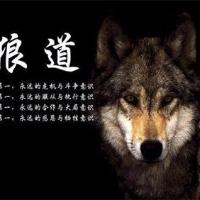 竞博蓝狐网络科技有限公司